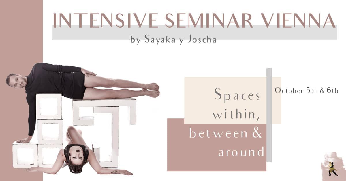 intensive-seminar-vienna-2019-sayaka-und-joscha